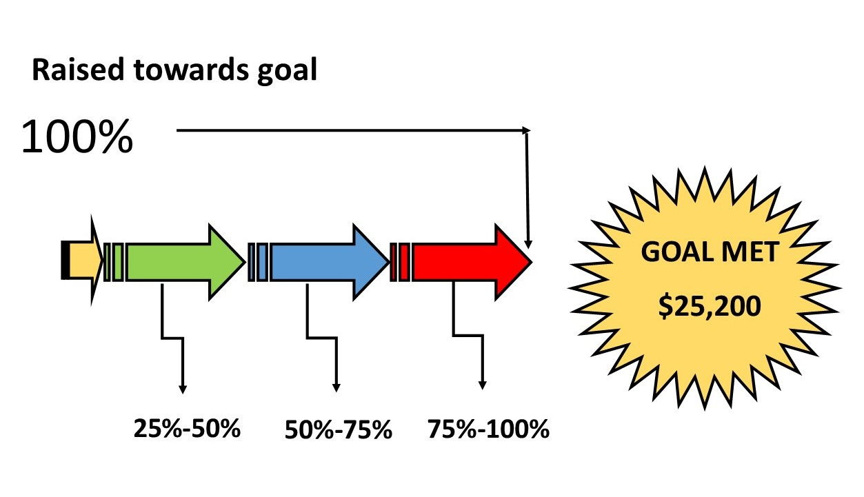 Matching Grant Graphic (100 Narrow)